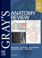 Gray's Anatomy Review
