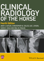 Clinical Radiology of the Horse
