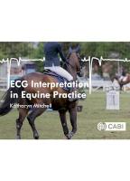 ECG Interpretation in Equine Practice