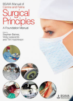 BSAVA Manual of Surgical Principles: A Foundation Manual