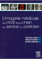 L'imagerie Médicale Du Chat Et Du Chien Au Service Du Praticien
