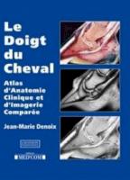Le Doigt du Cheval