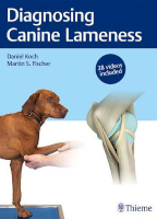 Diagnosing Canine Lameness