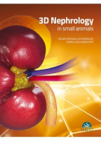 3D Nephrology in small animals