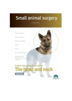 Small Animal Surgery. The Head and Neck. Vol. 2